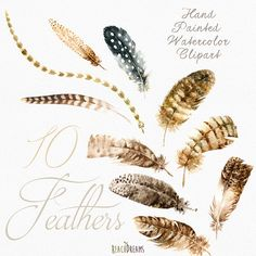 Feathers Watercolor Clipart. Hand painted, DIY elements, invite, Printable png, Boho style, Trendy Digital Image, Tribal