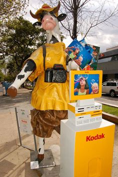 Kodak Tourist Cow at the Cow Parade in Guadalajara, Mexico, 2007 - photo by Steven Miller, via Flickr