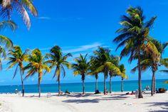Crandon Park Key Biscayne, one of Florida's best beaches Visit Florida, Florida Vacation, Florida Travel, Florida Beaches, Vacation Spots, South Florida, Beach Fun, Beach Trip, Miami Beach