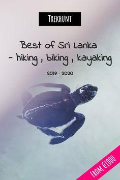 Photo by Isa Jokela-Gomes on Unsplash. Adventure Activities, Adventure Tours, Paragliding, Mountaineering, Rock Climbing, Tour Guide, Rafting, Sri Lanka, Biking