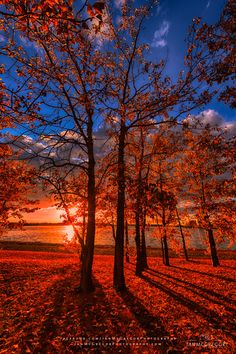 ~~Autumn Perfection 2852_13 ~ the setting sun casts its light, York Lake, Saskatchewan, Canada by Ian McGregor~~