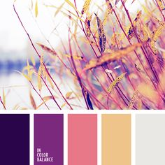 61 Ideas bathroom colors orange gray for 2019 Orange Color Palettes, Fall Color Palette, Colour Pallette, Purple Palette, Sunset Color Palette, Bedroom Color Schemes, Colour Schemes, Sunset Colors, Purple Sunset
