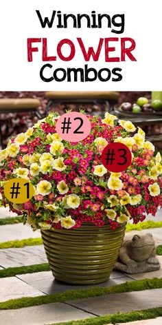 How gorgeous is this? You need these three flowers: 1. Supertunia Limoncello petunias, 2. Superbells Sweet Tart and 3. Superbells Cherry Star calibrachoa. I love how the colors play off each other. Win $250 in flowers to make your garden pop with the Proven Winners Dream Garden Sweepstakes #ad