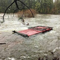 At least the snorkel is still above water