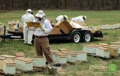 """Joe Lamp'l and the show """"Growing a Greener World"""" visited our NC location last year to speak to our President and bee guru, Shane, for an episode about the first year of a beekeeper and they released the episode! Click the image above to check out the full episode!"""
