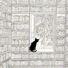 black cat and books......nothing better.