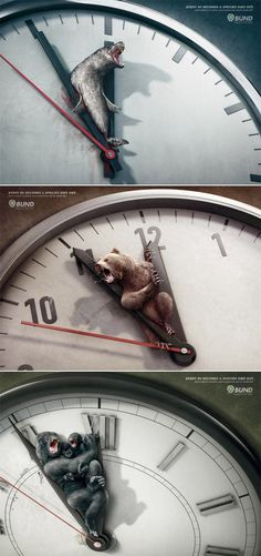 Creative campaign ads from BUND Every 60 seconds a species dies out. Each minute counts. Each donation helps. Bund.net