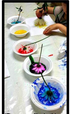 Çiçekli boya