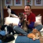 sheldon with cats