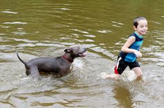 """(Noodles and Frankie would have loved this!!Def next year!!!)The event at Wenonah Lake was dubbed """"The End of the Dog Days of Summer."""""""