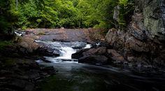 Les Sentiers du Lac en Cœur (Mandeville) souhaitent la bienvenue aux randonneurs et amants de la nature. De catégorie intermédiaire