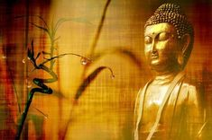 Siddhartha Gautama or Buddha was a great spiritual leader and founder of Buddhism in ancient India. Here are the 10 Teachings by Buddha for a better life.