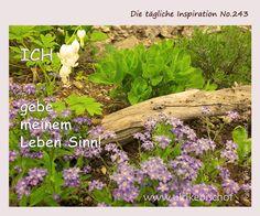 Die tägliche Inspiration No.243  www.inspirationenblog.wordpress.com  www.ulrikebischof.de