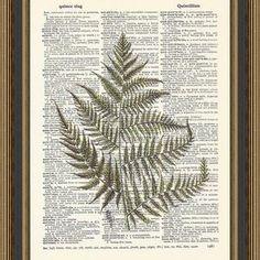 Woodland Art, Pressed Flower Art, Free Prints, Ferns, All Print, Dried Flowers, Wall Decor, Printed, Illustration