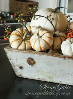 """What better way to decorate for fall than to bring it's natural splendor indoors… Here at StoneGable, I am filling bowls and lining shelves with fabulous fall offerings… The antique tool caddy sits on my kitchen island filled with various pumpkins and corn and berries! I have """"my sources"""" for inexpensive pumpkins… and each year more »"""
