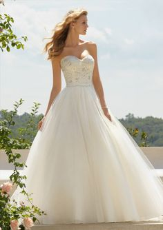 Classic Embroidered Lace On Tulle Wedding Dresses(HM0269)
