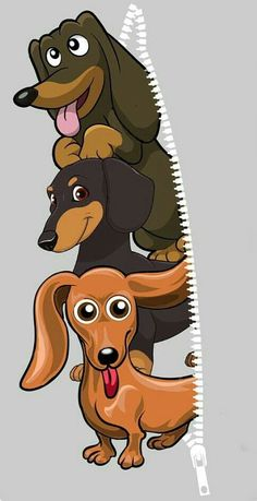 """See our web site for more details on """"dachshund pups"""". It is an outstanding place to read more. Arte Dachshund, Dapple Dachshund, Dachshund Gifts, Funny Dachshund, Dachshund Puppies, Weenie Dogs, Dachshund Love, Daschund, Dog Wallpaper"""