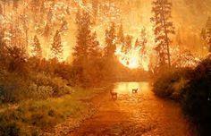 Photo taken near Missoula, Montana  Photographer: Firefighter John McColgan  August 6, 2000