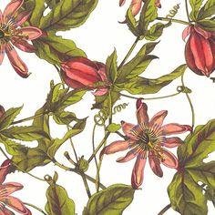 Caskata Artisanal Paper - Pink Passion