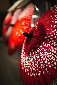 Red japanese umbrella