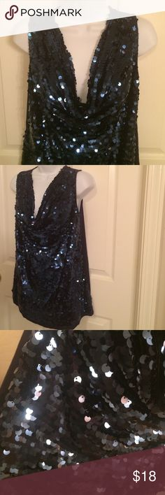💫🆕 Item💫 Blue Sequin Sassy Top Worn | Excellent Condition | All Blue | Blue Sequins in Front | Sheer Front Lining Underneath | Not Itchy | Sassy Drop in the Front | Sleeveless | Not Heavy | 100% Rayon & 100% Nylon |🚫 Trades | Feel Free to Ask Questions 🙋🏼| More 📷 Upon Request | Bundles & Offers are Welcomed ❤️| INC International Concepts Tops Blouses
