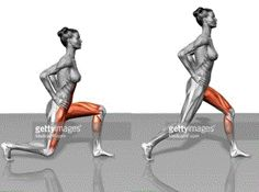 Lunge                                                                                                                                                                                 More