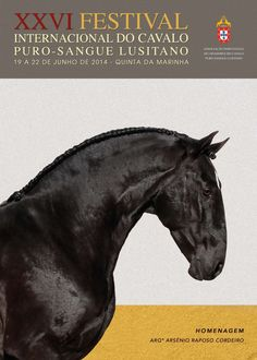 Last years poster for the International Lusitano festival held outside Lisbon, Portugal. Therapeutic Horseback Riding, Hunting Outfitters, Festival Internacional, Water In The Morning, Fifth Wheel Trailers, Andalusian Horse, Friesian, Equine Photography, Horse Breeds