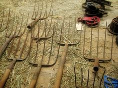 Collection of pitchforks.