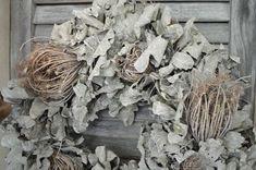 Gekalkte eikenblad-krans met dille knoppen