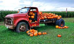 Pumpkin Truck – Saturday's Pie Fillings Daily Jigsaw Puzzle