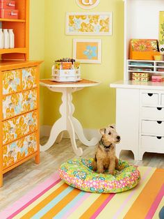 Top 10 Easy DIY Pet Bed Ideas