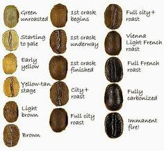 Bildresultat für Names of Coffee Beans - Coffee Tea Me - Kaffee Coffee Talk, I Love Coffee, Coffee Shop, Barista, Cafe Rico, Coffee World, Planet Coffee, Coffee Corner, Coffee Roasting