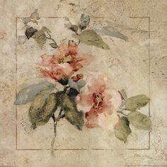 Title: Provence Rose I  Artist: Cheri Blum