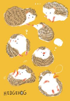momoro illustration, cute, hedgehog, design, kids, character, nature, autumn, drawing, animal, simple, mustard