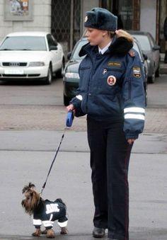 Vicious police dog.