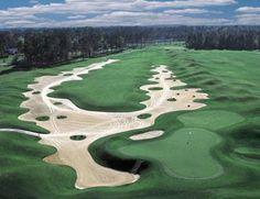 Long Bay Golf Club is just outside the central zone of Myrtle Beach, South Carolina's golf hub Famous Golf Courses, Public Golf Courses, Myrtle Beach Golf, Augusta Golf, Coeur D Alene Resort, Golf Apps, Golf Holidays, Golf Course Reviews, Golf Simulators