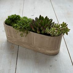 Marbleized Planter - Ledge for $19.99 ($34) from West Elm