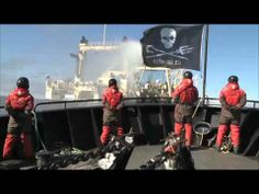 Have you seen our Direct Action Crew Video yet?? Join the Crew, make a difference!! Become a Direct Action Crew Member - http://www.youtube.com/watch?v=GYCK9fC2iNc&feature=youtu.be #SeaShepherd #defendconserveprotect