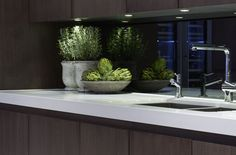 Kitchen Styling Ideas From Sophie Paterson   sheerluxe.com
