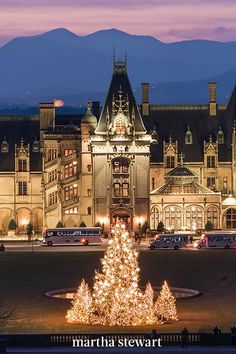 Asheville is one of North Carolina's largest cities—but the unparalleled yuletide décor at one of the most famous mansions in the nation. The Biltmore, a historic property owned by the Vanderbilt family, is adorned in garlands, twinkling lights, and plenty of crimson ribbons for the occasion. #christmas #holidayideas #christmasideas #wintertodo #marthastewart Santa Claus House, Visit Santa, Historic Properties, Christmas Town, Christmas Wonderland, Old Farm Houses, Twinkle Lights, Train Rides, Holiday Lights