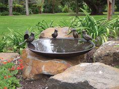 Blue Jay Birdbath Bowl / Willie Wildlife Sculpture - All About Bird Bath Fountain, Bird Bath Garden, Blue Jay, Concrete Bird Bath, String Lights Outdoor, Backyard Birds, Water Plants, Dream Garden, Water Features