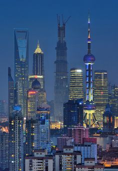 The Shanghai skyline Places To Travel, Places To Go, Shanghai Tower, Shanghai City, Shanghai Skyline, Peking, Night City, China Travel, Best Cities