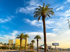 Picture of Las Vegas in the morning. Great shot right at the welcome sign. #photography