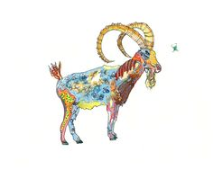 """Ibex - This limited edition print is available in 13"""" x 19"""", 5"""" x 7"""" or 8.5"""" x 11"""" sizes. Edition is limited to 50 pieces per size. Each print is hand signed and numbered. Starting at $8.50"""