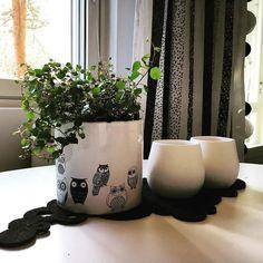 Perjantai! Mukavaa viikonlopun aattoa kaikille!  #home #myhome #koti #asetelma #sisustus #kitchen #keittiö #ruukku #ruukkukasvi #viherkasvi