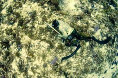 Crazy camo. Melting pot of brands. Testing gear and setups. #spearfishing #testing #DoubleK