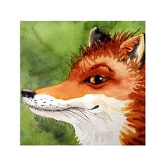 Items similar to 8 Red Fox animals in painting fox artwork Watercolor PRINT Nature animal decor, Orange painting fox, Watercolour fox, Nursery fox painting A on Etsy Fox Painting, Orange Painting, Painting Prints, Art Prints, Watercolor Animals, Watercolor Print, Watercolor Paintings, Fox Watercolour, Watercolor Ideas