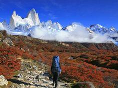 Patagonia: profondo sud - La Patagonia delle vette - Traveller Cards