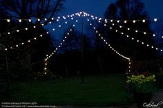 Outdoor Canopy of Festoon Lights. Lighting by Oakwood Events.