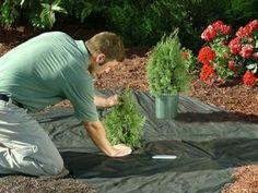 Easy Gardener 1071 Weed Block Landscape Fabric - X